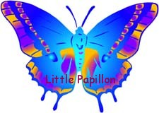 Little Papillon Shop